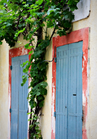 French la Vie  Corey Amaro  Provence Blue Doors