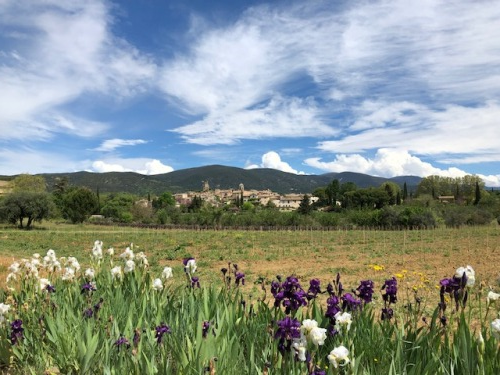Exploring Provence with the French la Vie
