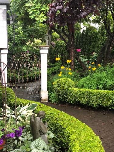 Kathy's beautiful garden