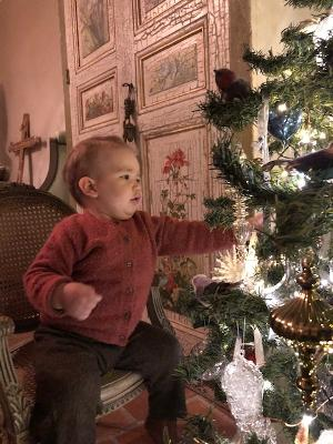 Gabriel Christmas Wonder and the Chrstmas Tree 4