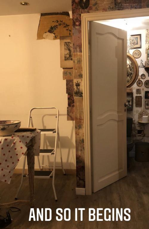 wallpaper adventure, corey amaro, french la vie