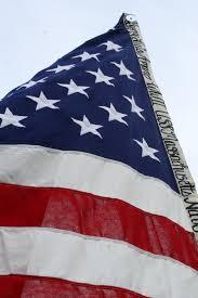 Flag vote