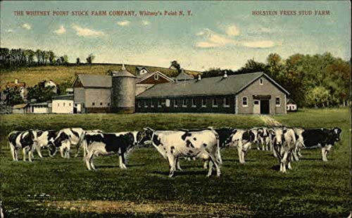Whitney Point  New York  a dairy farming via the internet
