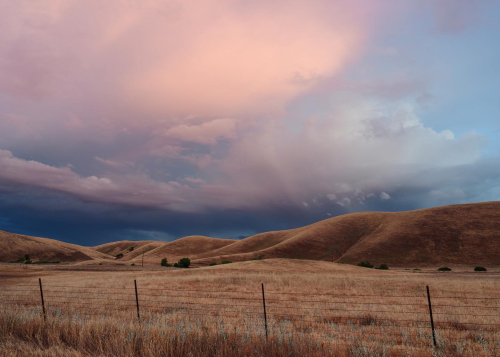 Sacha Rolland-Benis Photo sale #13 Pink Clouds