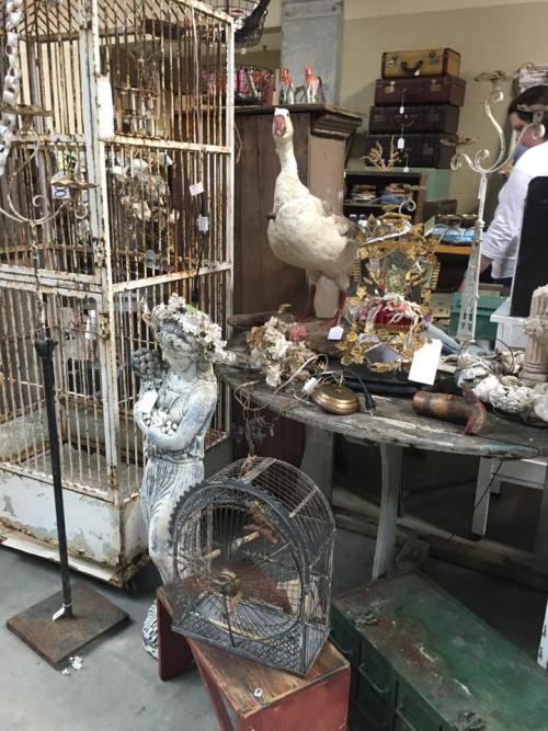 Linda morrison's shop 5