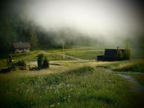 Lieselotte Austria