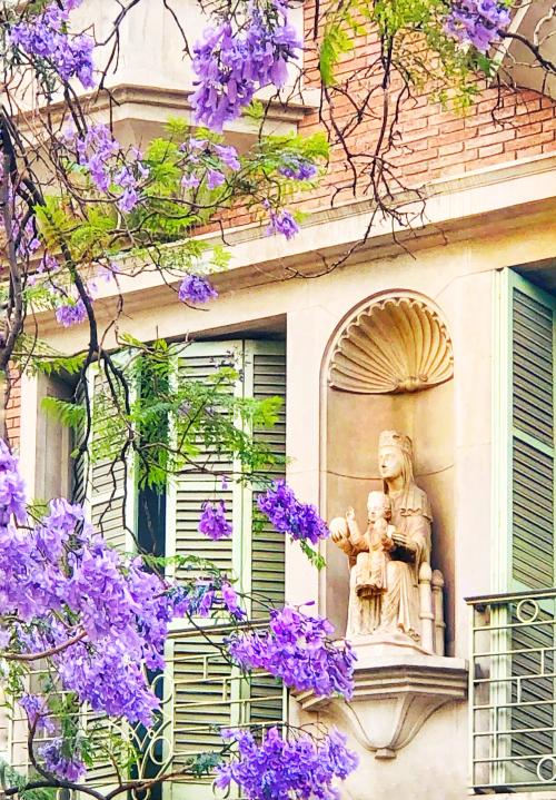 Barcelona in Bloom