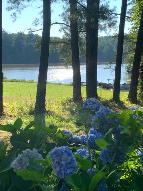 Debra Graham landscape
