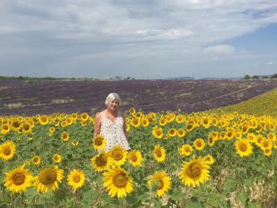 Laurie-annya sunflowers