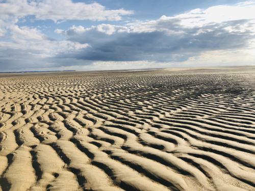 beach low tide
