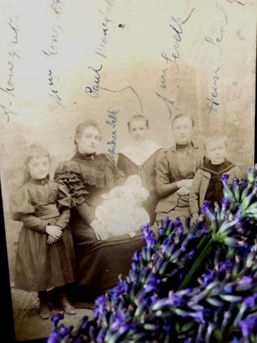 Gathering Lavender